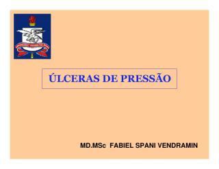 Ulcera Pessão.pdf