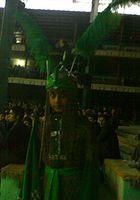 محمد طوطی