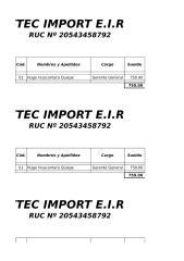 DDJJ Cytec Import EIRL (Modificado) - Período 2015.xls