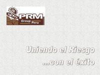 PRM Consulting.pdf