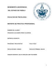 Francisco Practica profesional.docx
