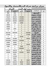 قائمة الميزانية والدخل.xlsx