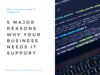 Why Do You Need IT Support 5 Reasons Why Your Business Needs IT Support.pdf